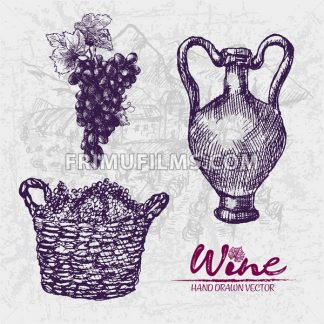 Digital color vector detailed line art grape bunches in wooden braided basket and old ancient pitcher hand drawn retro illustration set outlined. Vintage ink flat, engraved doodle sketches. Isolated - frimufilms.com