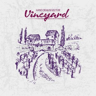 Digital color vector detailed line art purple vineyard fields with buildings and trees hand drawn illustration set. Thin artistic pencil outline. Vintage ink flat, engraved doodle sketches. Isolated - frimufilms.com