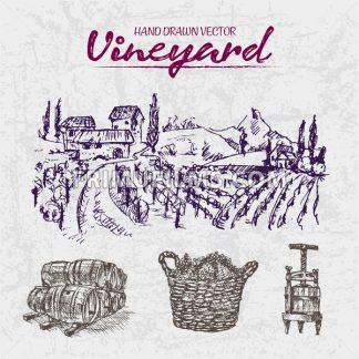 Digital color vector detailed line art purple wooden stacked wine barrels, basket and wine press hand drawn illustration set outlined. Vintage ink flat, engraved doodle sketches. Vineyard background - frimufilms.com