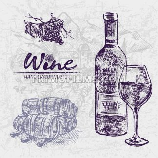 Digital color vector detailed line art wine bottle and glass, stacked wooden barrels and black grape bunch with leaves hand drawn illustration set. Vintage ink flat, engraved doodle sketches. Isolated - frimufilms.com