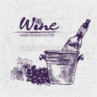 Digital color vector detailed line art wine bottle in ice bucket and black grape bunch with leaves hand drawn illustration set. Thin outline. Vintage ink flat, engraved doodle sketches. Isolated - frimufilms.com