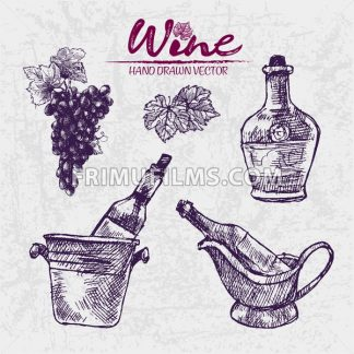 Digital color vector detailed line art wine bottles in ice buckets, pitcher and black grape bunch with leaves hand drawn illustration set outlined. Vintage ink flat, engraved doodle sketches. Isolated - frimufilms.com