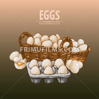 Digital vector detailed line art eggs in wooden basket hand drawn retro illustration collection set. Thin artistic pencil outline. Vintage ink flat, engraved mill doodle sketches. Isolated - frimufilms.com