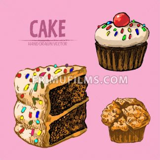 Digital vector detailed line art sliced cake and cupcakes hand drawn retro illustration collection set. Thin artistic pencil outline. Vintage ink flat, engraved design doodle sketches. Isolated - frimufilms.com