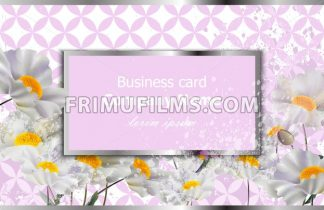 Business card with white chamomile flowers. Vector realistic floral decor, 3d illustration - frimufilms.com