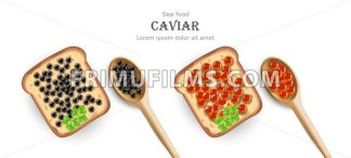 Caviar Vector realistic. Red and black caviar toasts. Top view 3d detailed illustration - frimufilms.com