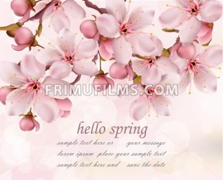 Cherry flowers branch spring card background Vector illustration - frimufilms.com