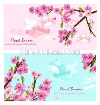 Cherry flowers cards Vector. Spring layer background decor - frimufilms.com