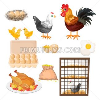 Eco farming. Rooster, chicken and eggs pattern Vector - frimufilms.com