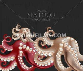 Fresh octopus Vector realistic. 3d detailed seafood illustration - frimufilms.com