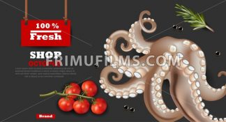 Fresh octopus banner Vector realistic. 3d detailed illustration - frimufilms.com