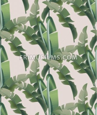 Green tropical leaves Vector pattern background. abstract summer template - frimufilms.com