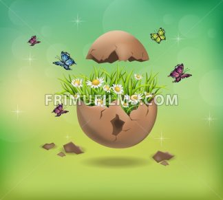 Happy Easter Cracked egg and chamomile flowers illustration - frimufilms.com