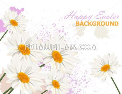 Happy Easter card with chamomile flowers background Vector illustration - frimufilms.com