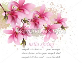 Hello spring pink flowers card Vector. Watercolor splash Lovely greeting. Delicate illustration background - frimufilms.com