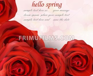 Hello spring red roses Vector. Romantic passional greeting card template - frimufilms.com