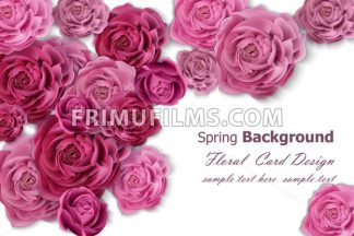 Invitation card with rose flowers decor. Vector illustration - frimufilms.com