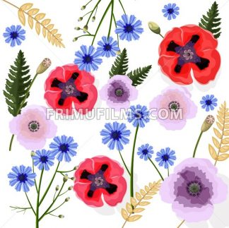 Poppy flowers pattern Vector. Floral background decor - frimufilms.com
