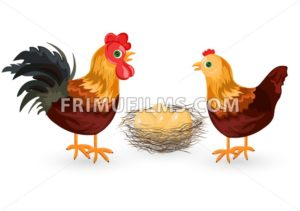 Rooster, chicken and eggs in the nest Vector. Eco farming - frimufilms.com