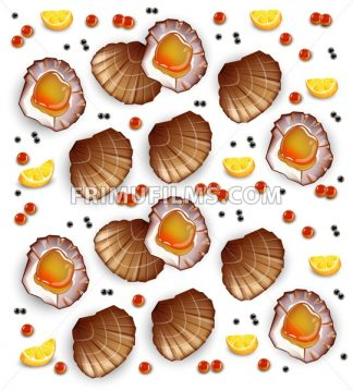 Scallops pattern Vector realistic seafood. Fresh shellfish. 3d detailed illustration - frimufilms.com