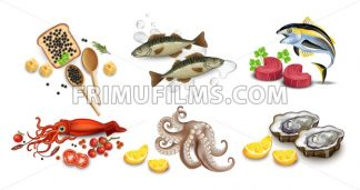 Tuna fish, caviar, squid, oysters and octopus seafood set. Vector realistic detailed illustration - frimufilms.com