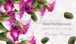 Vintage roses background Vector. Grunge texture layout - frimufilms.com