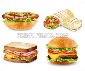Burger, sandwich, hot dog and wrap Vector isolated. Realistic set collection - frimufilms.com