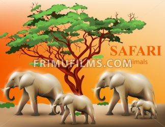 Elephants safari background Vector illustration wildlife template - frimufilms.com