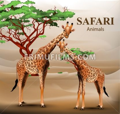 Giraffe safari background Vector. Animals wildlife illustration - frimufilms.com