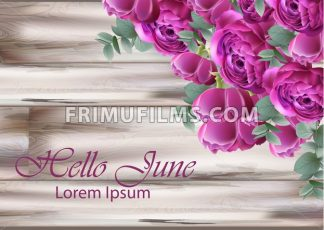 Hello june Peonies bouquet Vector. Vintage floral decor violet color - frimufilms.com