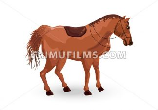 Horse isolated Vector. Elegant Detailed animal illustration - frimufilms.com