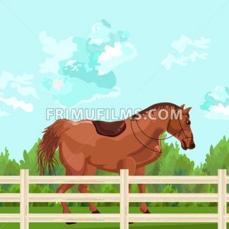 Horse outdoors Vector. Elegant Detailed animal illustration green background - frimufilms.com