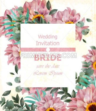Wedding invitation with delicate daisy flowers Vector. Beautiful card background illustration - frimufilms.com