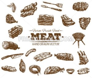 Collection 14 of hand drawn meat sketch, black and white vintage illustration - frimufilms
