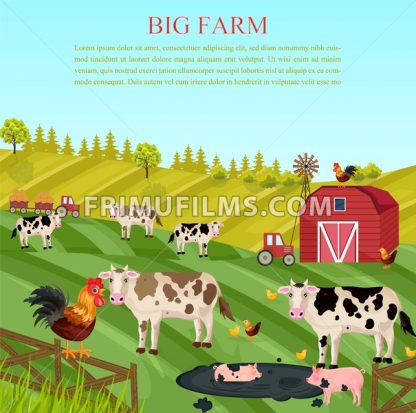 Cows and pigs animals at the farm Vector. summer green background - frimufilms.com