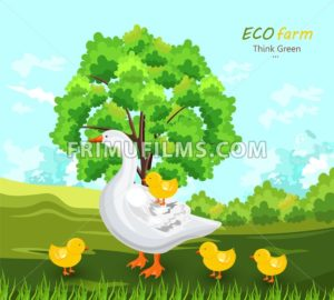 Duck and buds Vector. Eco farm concept. green summer background - frimufilms.com