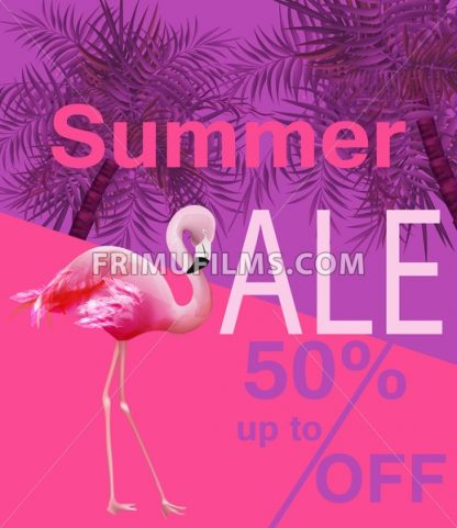 Flamingo Summer sale card Vector. violet and pink background - frimufilms.com