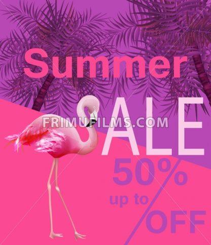 Flamingo Summer sale card Vector. violet and pink background - frimufilms.com