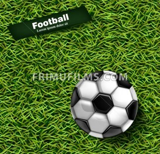 Football green grass background Vector. Realistic 3d ball detailed illustration - frimufilms.com