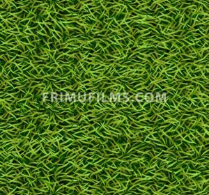 Green grass background Vector. Realistic template illustration - frimufilms.com