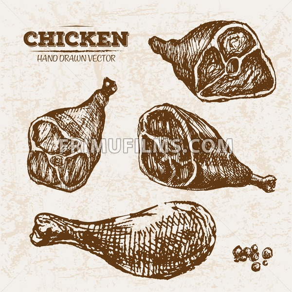 Hand drawn sketch chicken legs meat products set, farm fresh food, black and white vintage illustration - frimufilms.com