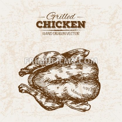 Hand drawn sketch chicken meat, farm fresh food, black and white vintage illustration - frimufilms.com