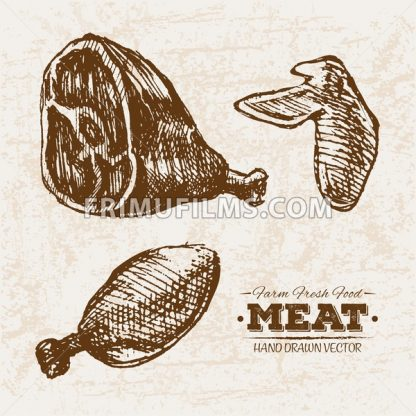 Hand drawn sketch chicken meat wings and legs products set, farm fresh food, black and white vintage illustration - frimufilms.com