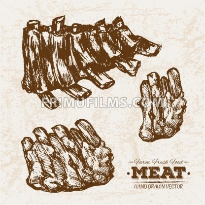 Hand drawn sketch meat grilled ribs products set, farm fresh food, black and white vintage illustration - frimufilms.com