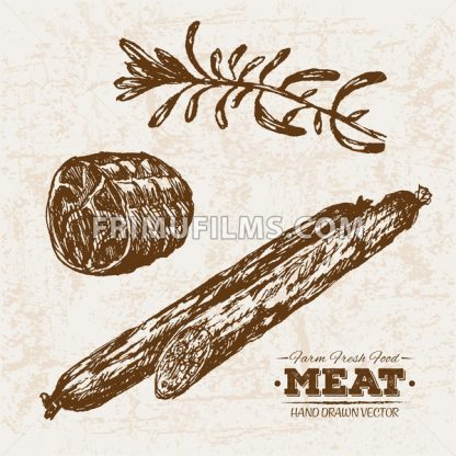 Hand drawn sketch meat salami and rosemary, farm fresh food, black and white vintage illustration - frimufilms.com