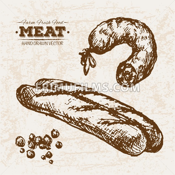 Hand drawn sketch meat sausage and bread, farm fresh food, black and white vintage illustration - frimufilms.com