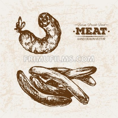Hand drawn sketch meat sausages products set, farm fresh food, black and white vintage illustration - frimufilms.com