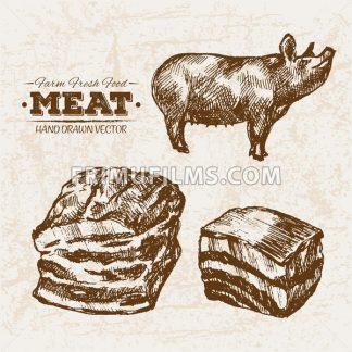 Hand drawn sketch pork and ham meat products set, farm fresh food, black and white vintage illustration - frimufilms.com