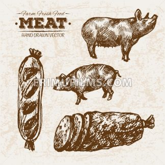 Hand drawn sketch pork meat and sausages products set, farm fresh food, black and white vintage illustration - frimufilms