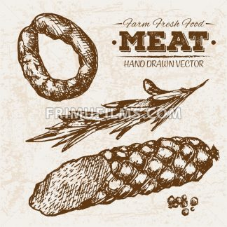 Hand drawn sketch salamy meat and rosemary products set, farm fresh food, black and white vintage illustration - frimufilms.com